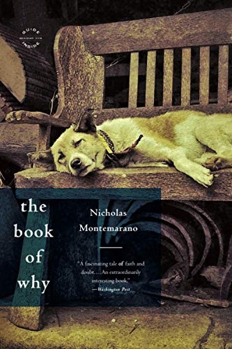 9780316188463: The Book of Why: A Novel