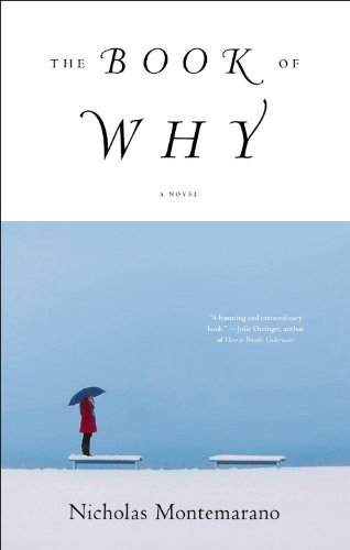 9780316188470: The Book of Why: A Novel