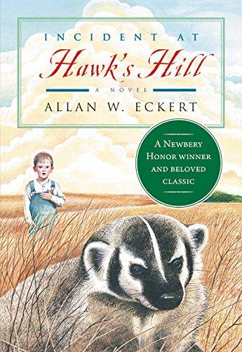 9780316209489: Incident at Hawk's Hill