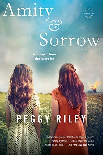 9780316220873: Amity & Sorrow: A Novel