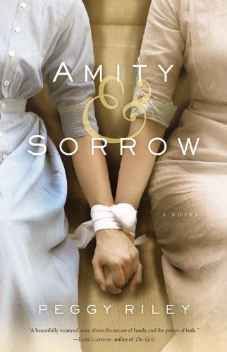 9780316220880: Amity & Sorrow: A Novel