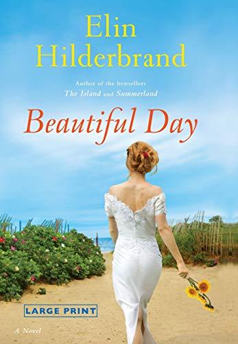 9780316233941: Beautiful Day: A Novel
