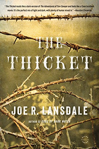 9780316248754: The Thicket