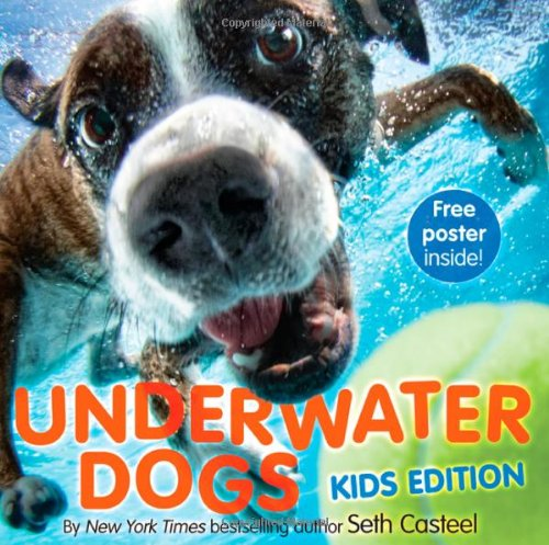 9780316255585: Underwater Dogs: Kids Edition