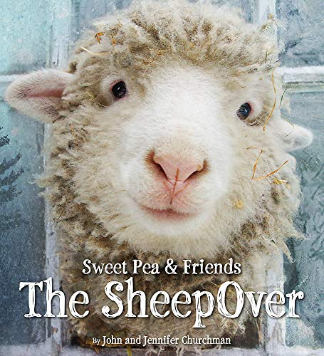 9780316273565: The SheepOver (Sweet Pea & Friends)