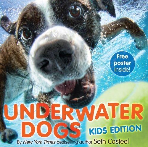 9780316281577: Underwater Dogs: Kids Edition