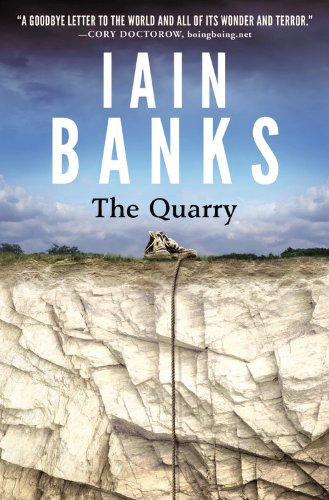 9780316281836: The Quarry