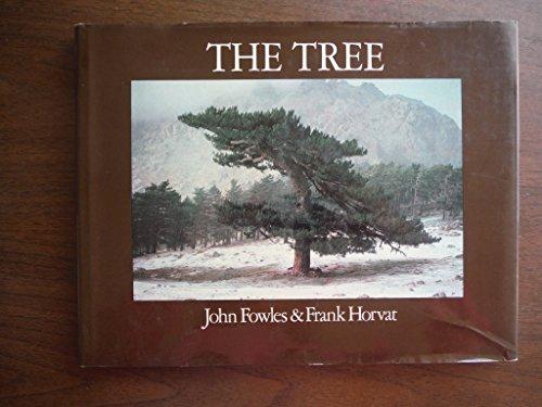 9780316289573: The Tree