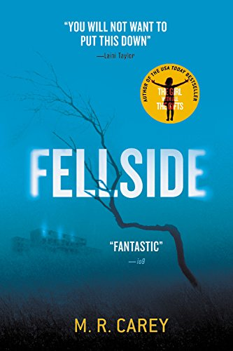 9780316300278: Fellside
