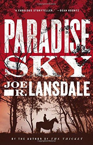 9780316329378: Paradise Sky