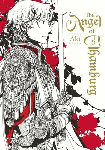 9780316340465: The Angel of Elhamburg