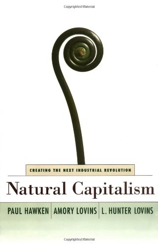 9780316353168: Natural Capitalism: Creating the Next Industrial Revolution