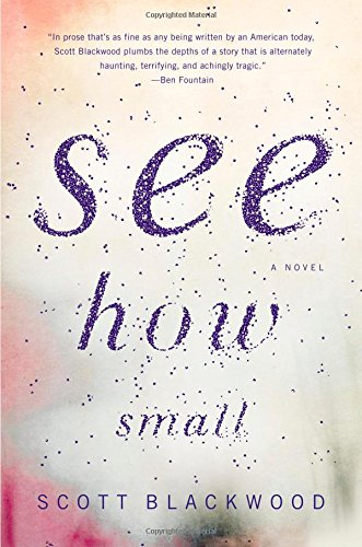 9780316373807: See How Small: A Novel