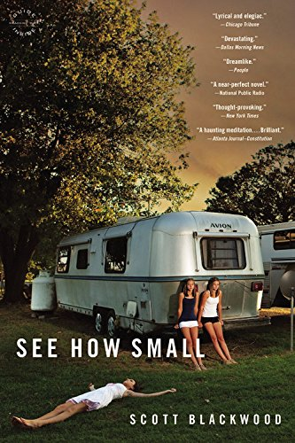 9780316373944: See How Small: A Novel