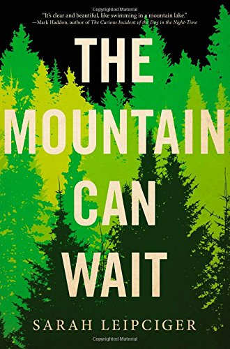 9780316380676: The Mountain Can Wait