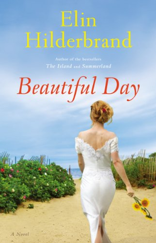 9780316401104: Beautiful Day: A Novel