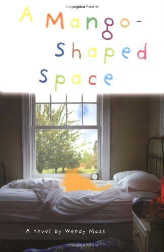 9780316523882: A Mango-Shaped Space: A Novel