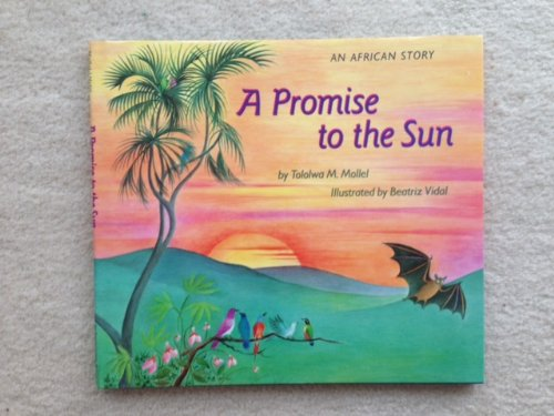 9780316578134: A Promise to the Sun: An African Story