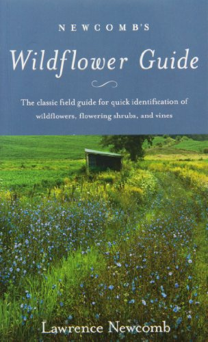 9780316604420: Newcomb's Wildflower Guide