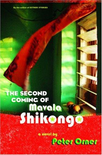 9780316735803: The Second Coming of Mavala Shikongo: A Novel