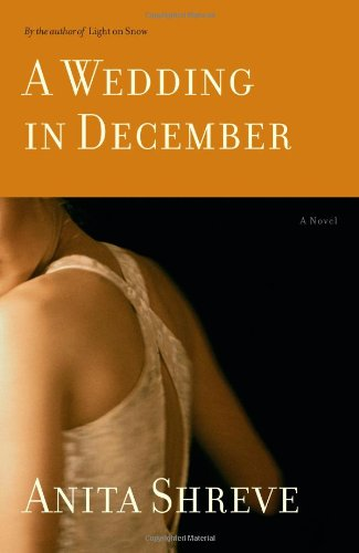 9780316738996: A Wedding in December: A Novel