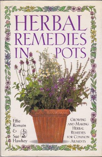 9780316755795: Herbal Remedies in Pots