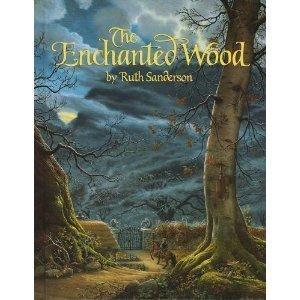 9780316771023: The Enchanted Wood