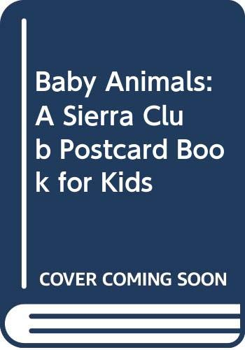 9780316790246: Baby Animals: A Sierra Club Postcard Book for Kids