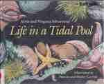 9780316791205: Life in a Tidal Pool
