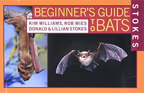 9780316816588: Stokes Beginner's Guide to Bats