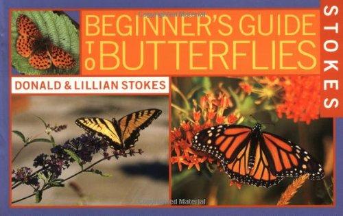 Beginner's Guide to Butterflies