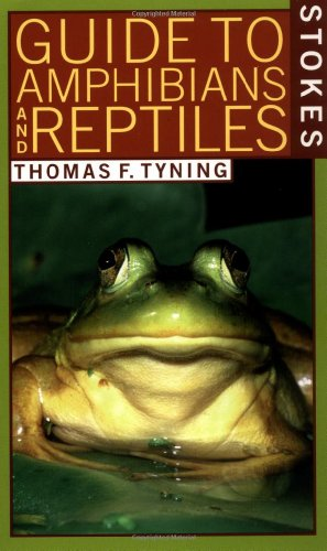 9780316817134: A Guide to Amphibians and Reptiles (Stokes Nature Guides)
