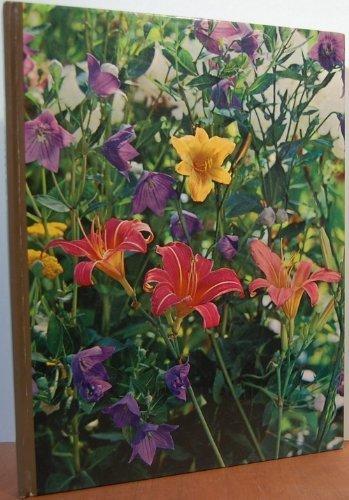 9780316848176: Perennials,