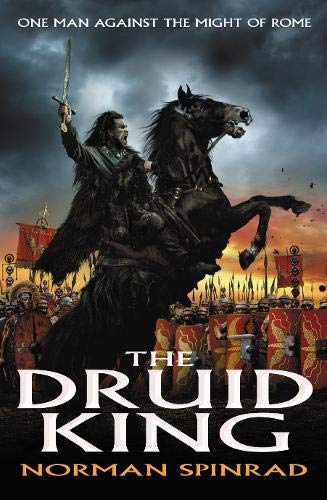 9780316861588: The Druid King
