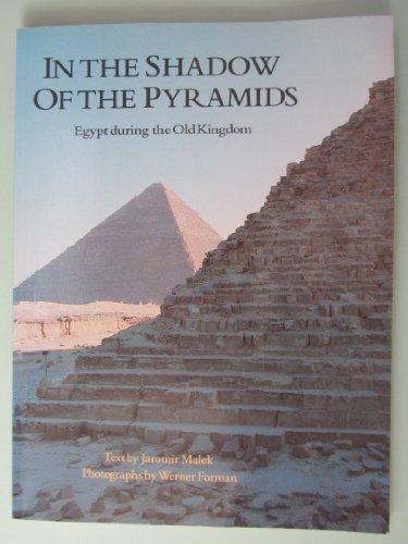In Shadow of Pyramid: Jaromir Malek