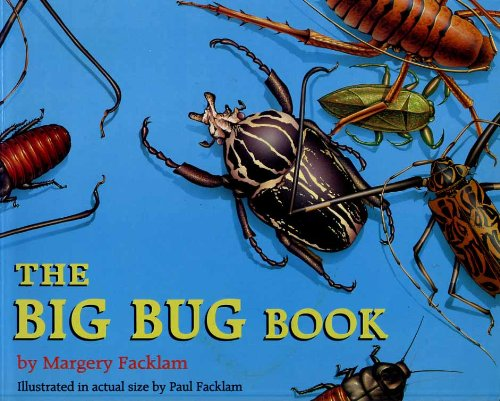 9780316909761: The Biggest Bug Book