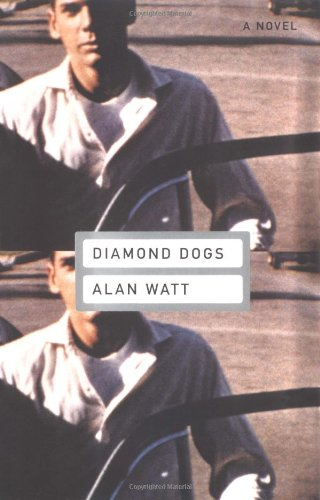 9780316925815: Diamond Dogs: A Novel