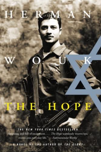 9780316954419: The Hope: A Novel