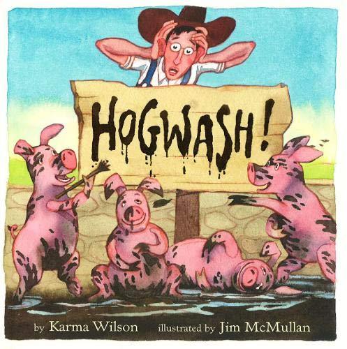 9780316988407: Hogwash! (Wilson, Karma)