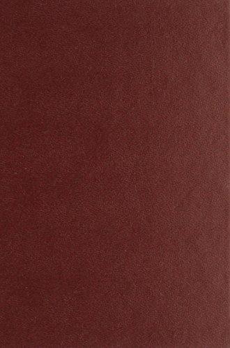 9780320061523: Historia De La Lengua Italiana/history Of The Italian Language (Spanish Edition)