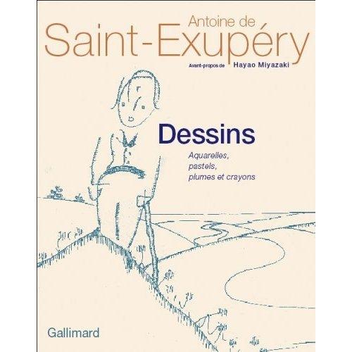 9780320079757: Dessins : Aquarelles, plumes, pastels et crayons (French Edition)