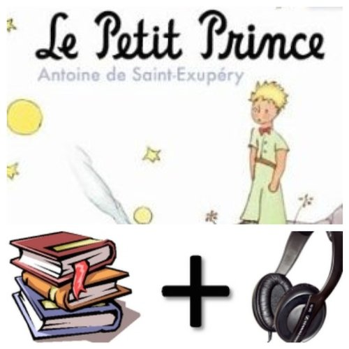 9780320099939: Le petit prince Audiobook PACK [Book + 2 CD's] (French Edition)