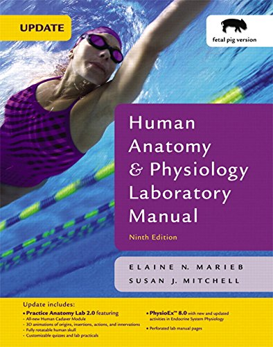9780321541543: Human Anatomy & Physiology Laboratory Manual Edition: Eighth