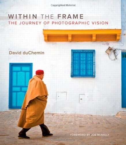 9780321605023: Within the Frame: The Journey in Photographic Vision