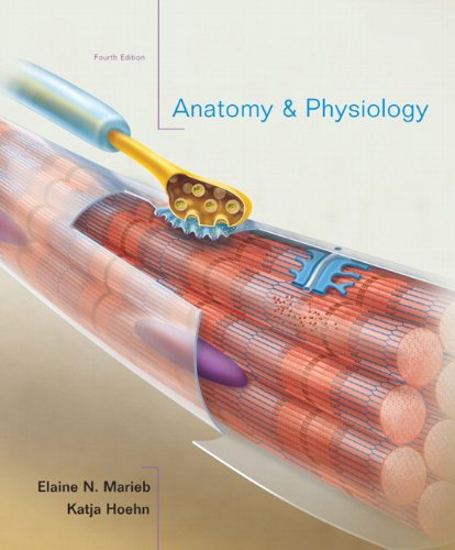 9780321616401: Anatomy & Physiology, 4th Edition