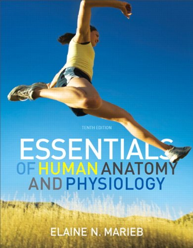 9780321695987: Essentials of Human Anatomy & Physiology (10th Edition)