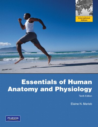 Essentials of Human Anatomy and Physiology: Marieb E N