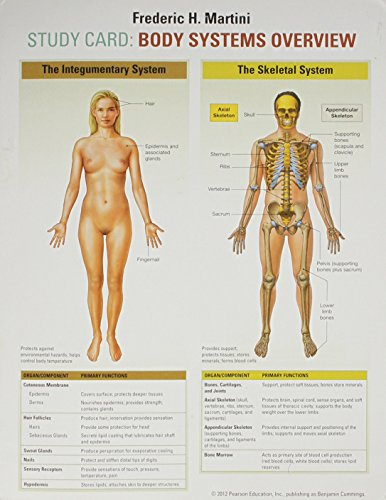 Study Card for Martini: Body Systems Overview: Martini, Frederic H.