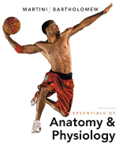 Essentials of Anatomy & Physiology [Sixth 6th Edition]: Martini, Frederic H.; Bartholomew, ...