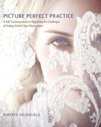 9780321803535: Picture Perfect Practice: A Self-Training Guide to Mastering the Challenges of Taking World-Class Photographs